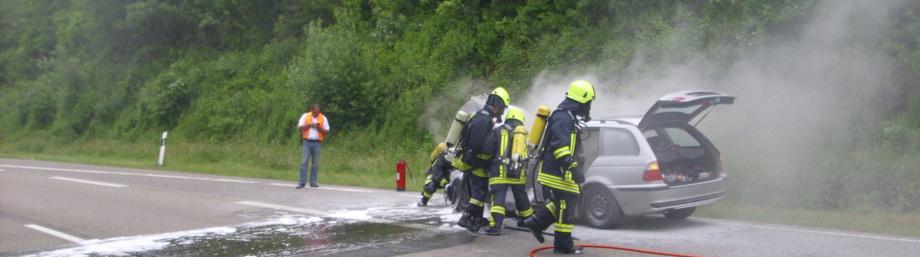 Freiwillige Feuerwehr Thaleischweiler Fröschen
